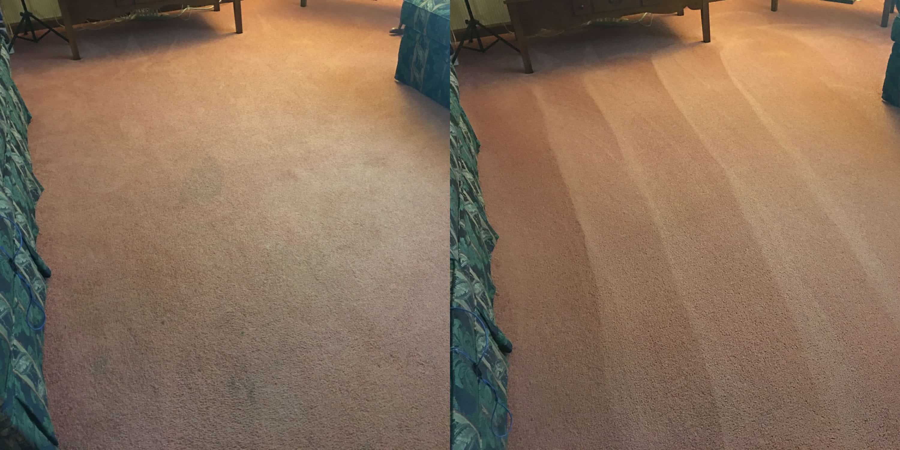 Driganic Carpet Cleaning Services In Springfield Pa
